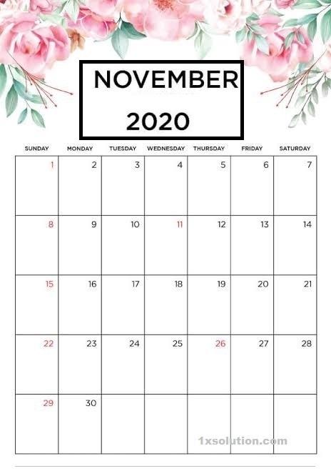 Cute November 2020 Calendar Excel