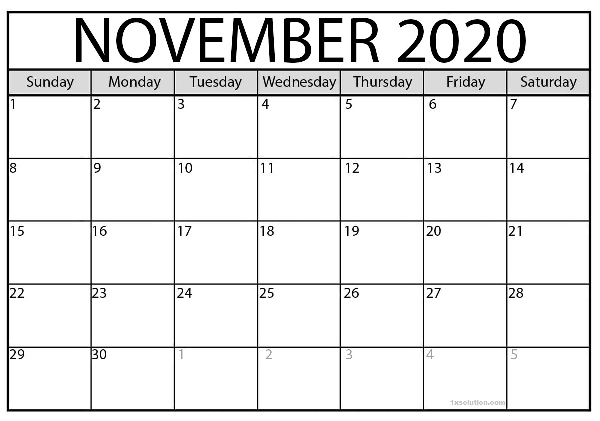 Daily November 2020 Calendar Printable